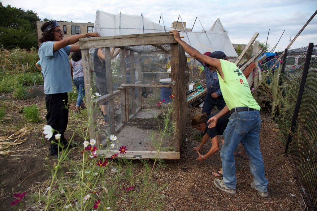 Group of people outside working together to repair a mesh enclosed compost bin.